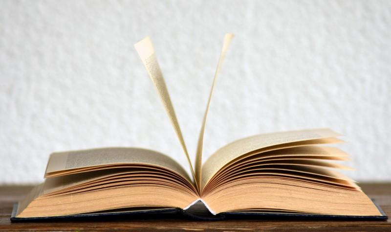 palabras-rebuscadas-diccionario